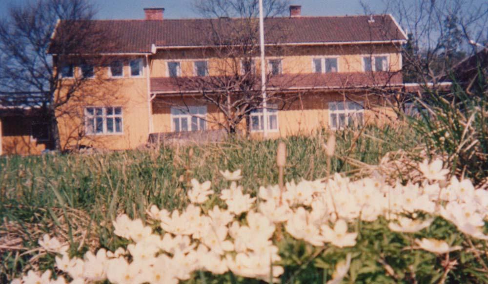 1988 hovedhus